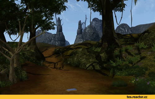 TES gif,The Elder Scrolls,фэндомы,Morrowind,залипалово GIFs