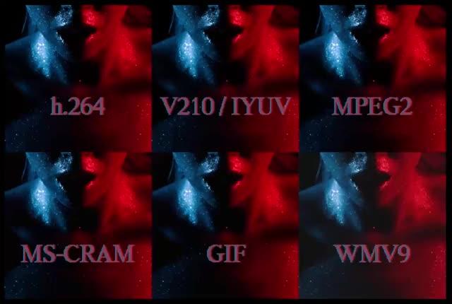 Watch codecs GIF on Gfycat. Discover more brokengifs GIFs on Gfycat