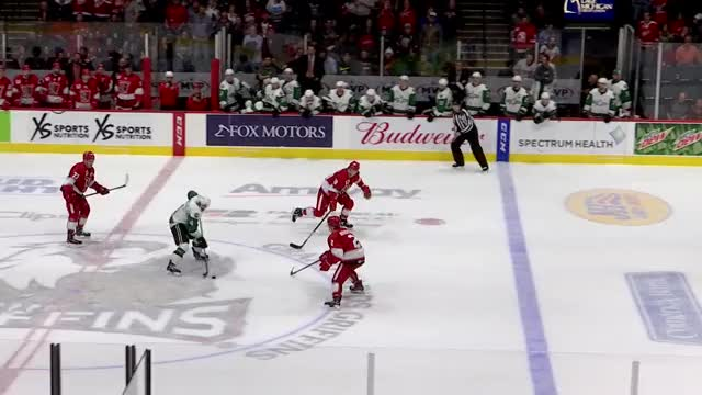 Watch and share Tyler Bertuzzi GIFs and Grand Rapids GIFs on Gfycat