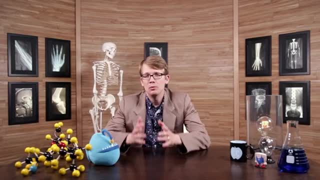 Watch and share Urinary System, Part 1: Crash Course A&P #38 GIFs on Gfycat