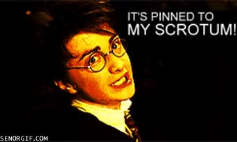 Watch harrypotter GIF on Gfycat. Discover more daniel radcliffe GIFs on Gfycat