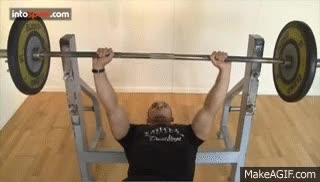 Watch bench press GIF on Gfycat. Discover more related GIFs on Gfycat
