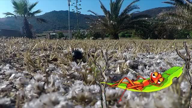 Watch SpareTag | Lazy Ant GIF by SpareTag (@sparetag) on Gfycat. Discover more Ants, Break, Hammock, SpareTag.com GIFs on Gfycat
