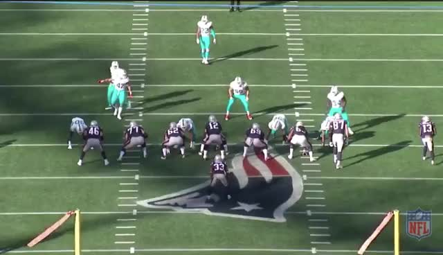 Watch Dolphins NCAA 2 GIF by Andrew Callahan (@acallahan24) on Gfycat. Discover more related GIFs on Gfycat