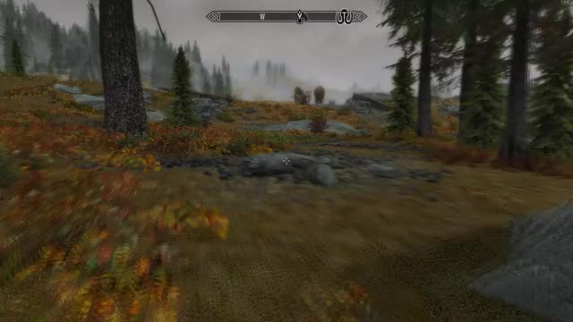 Watch phoenix skyrim GIF on Gfycat. Discover more related GIFs on Gfycat