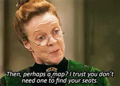 Watch and share Minerva Mcgonagall GIFs and Philosophers Stone GIFs on Gfycat