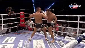 Watch For Fighters, Not Lovers GIF on Gfycat. Discover more andrei stoica, kickboxing, knockout, left hook, martial arts, moises baute, punch, superkombat GIFs on Gfycat