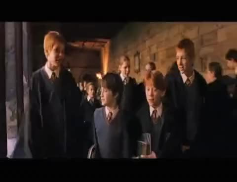 Watch Boys GIF on Gfycat. Discover more Harry Potter GIFs on Gfycat