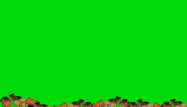 Watch and share Falling Leaves Green Screen Animation GIFs on Gfycat