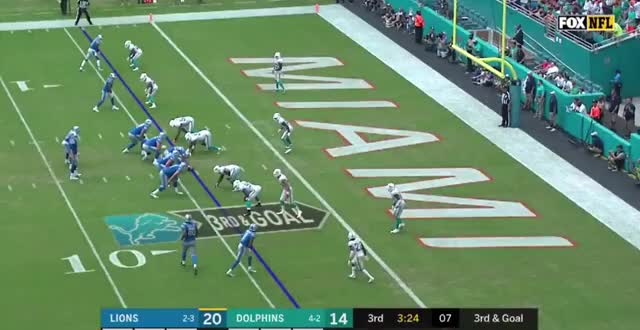 Watch and share Miami Dolphins GIFs and Detroit Lions GIFs by Matt Weston on Gfycat