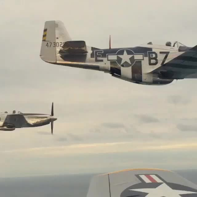 Watch In a P-51 Mustang (reddit) GIF on Gfycat. Discover more kateupton GIFs on Gfycat