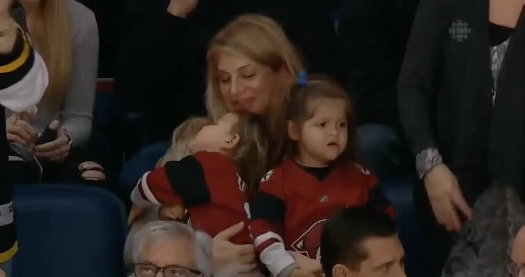 coyotes, I don't know how you should feel. (reddit) GIFs