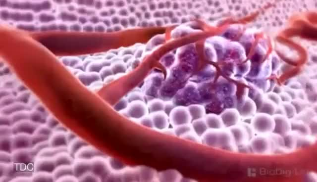 Watch and share New Cancer Drug Shrinks All Tumors!?! GIFs on Gfycat