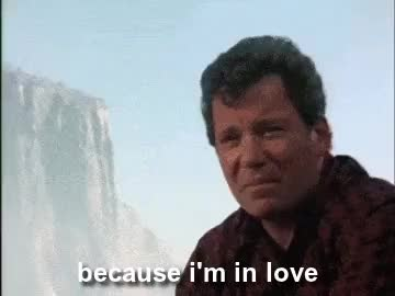 Watch i thought you were smaller. GIF on Gfycat. Discover more captain kirk, jim kirk, just sayin, otp, ship, space husbands, spirk, spock, star trek, the voyage home, william shatner GIFs on Gfycat