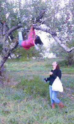 Whatcouldgowrong, holdmycosmo, popular,  GIFs