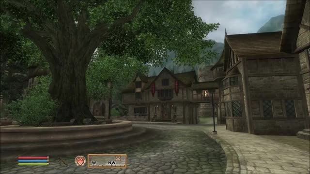 Watch Elder Scrolls Oblivion GIF by @swaggymac on Gfycat. Discover more elder scrolls, oblivion GIFs on Gfycat