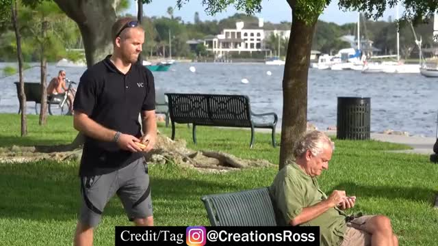 Watch Secretly Putting Cheeseburgers on People's Heads GIF on Gfycat. Discover more Creations, comedy, creationsross, funny, hilarious, ross, rosscreations, stunt, vlog GIFs on Gfycat