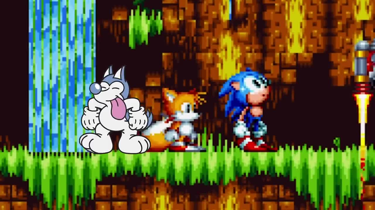 Husky Plays Sonic ROM Hacks PART 1