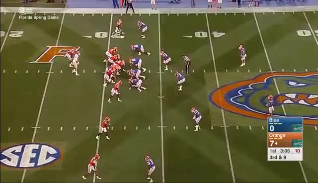 Watch Florida Gators 2017 Full Spring Game 4/7/2017 (The Swamp) GIF on Gfycat. Discover more related GIFs on Gfycat