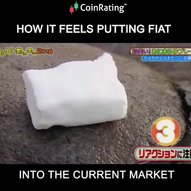 Watch HOW IT FEELS TO PUT FIAT INTO MARKET GIF on Gfycat. Discover more Crypto, bitcoin, coin, coins, cryptocurrency, market GIFs on Gfycat