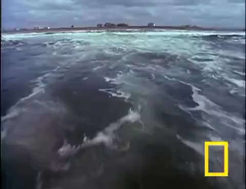 Watch Killer Tsunamis | National Geographic GIF on Gfycat. Discover more related GIFs on Gfycat
