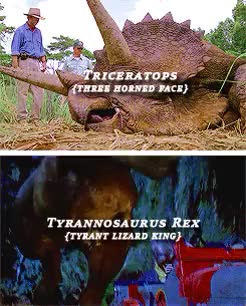 Watch and share Jurassic Park 3 GIFs and Jurassic World GIFs on Gfycat