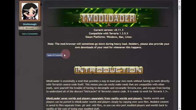Standalone - [1 3] tModLoader - A Modding API | Terraria
