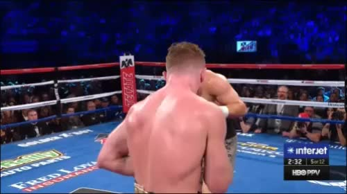 Watch canelo GGG GIF by @ebh602 on Gfycat. Discover more related GIFs on Gfycat
