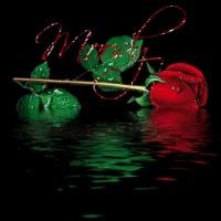 moody rode roos met water
