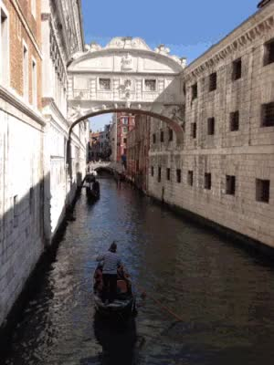 Watch and share Venice! GIFs on Gfycat