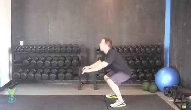 Watch this squat jumps GIF on Gfycat. Discover more exercise, fitness, jump, speed, squat, squat jumps, squats GIFs on Gfycat