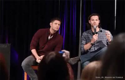Watch Moose GIF on Gfycat. Discover more I tryed to make a gifset, Jensen Ackles, and adorable, but I dunno, jared padalecki, jensen being awkward, spn GIFs on Gfycat