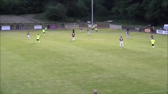 Watch and share Brighton And Hove GIFs and Football GIFs by ryzu on Gfycat