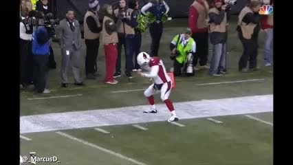 azcardinals, nfl, What is the best gif you have seen on /r/nfl? (reddit) GIFs