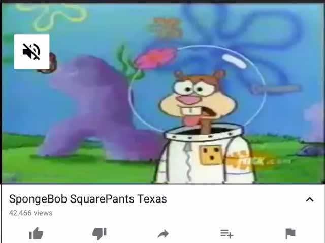 Watch SpongeBob Texas GIF by SpongeBob Badour (@sbadour) on Gfycat. Discover more SpongeBob, Texas, smashgifs, ssmb GIFs on Gfycat