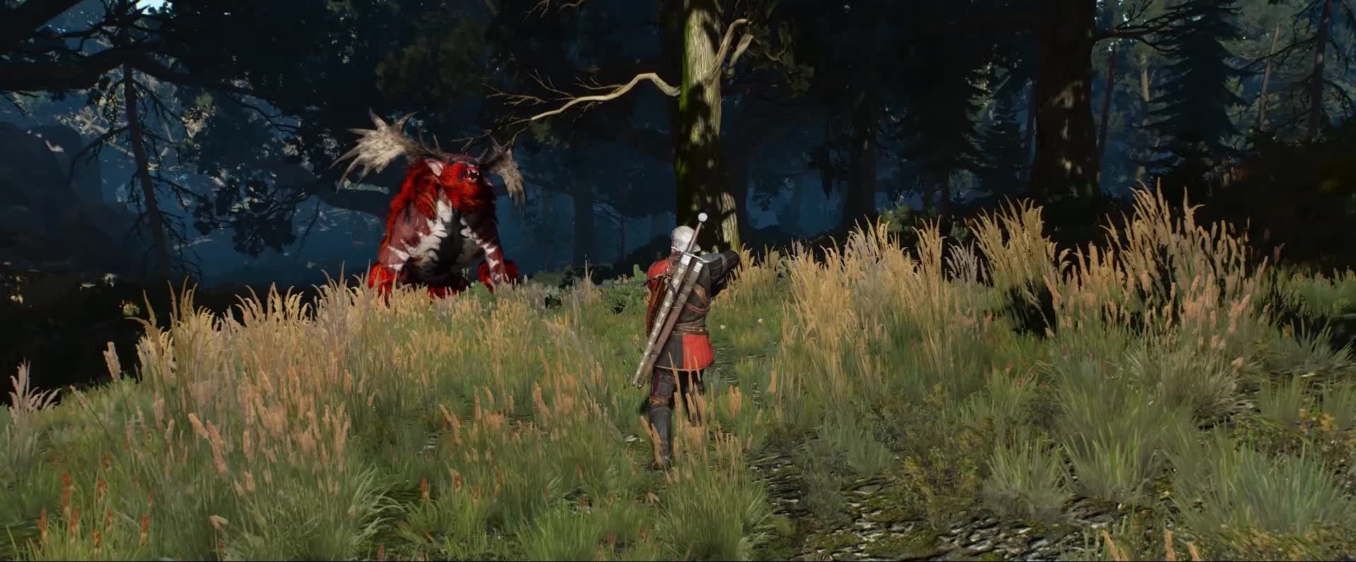 gaming, nvidia, witcher, NVIDIA HairWorks GIFs