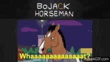 Watch Bojack Horseman GIF on Gfycat. Discover more related GIFs on Gfycat