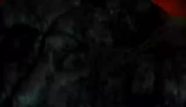 Watch and share Ga\'hoole GIFs and Guardian GIFs on Gfycat