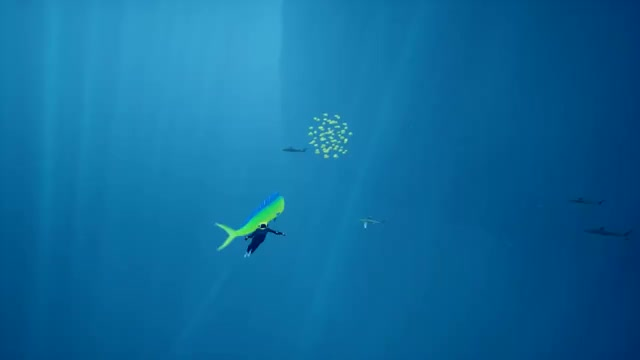 Watch and share Scuba GIFs and Abzu GIFs by Bufflez on Gfycat