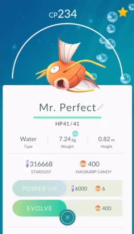 TheSilphRoad, pokemongo, Mr. Perfect GIFs