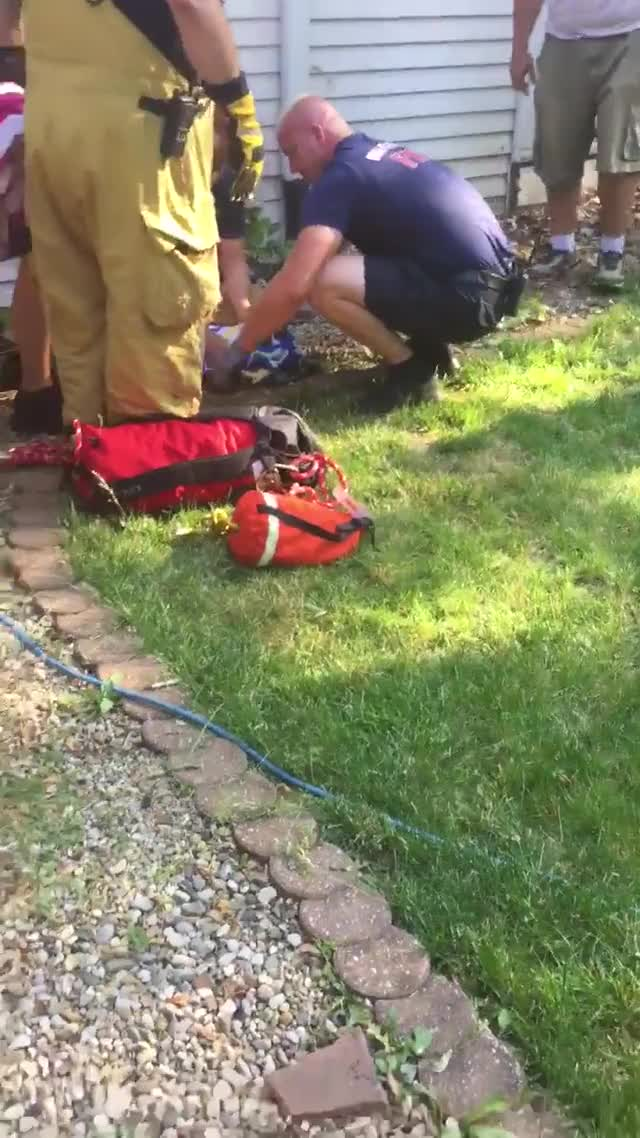 Watch and share Firemen GIFs and Fawn GIFs by PM_ME_STEAM_K3YS on Gfycat