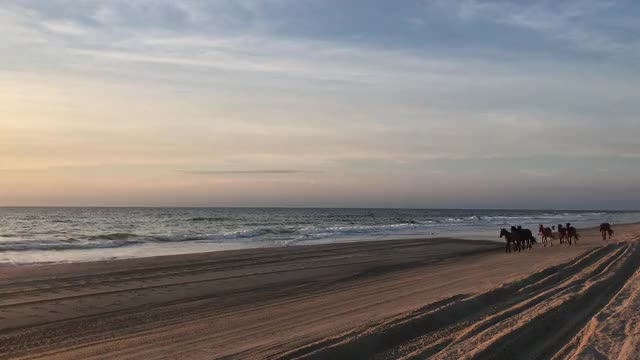 Watch and share North Carolina GIFs and Outer Banks GIFs by OBXchillin on Gfycat