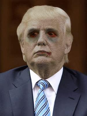 Watch and share Trump Moron GIFs on Gfycat