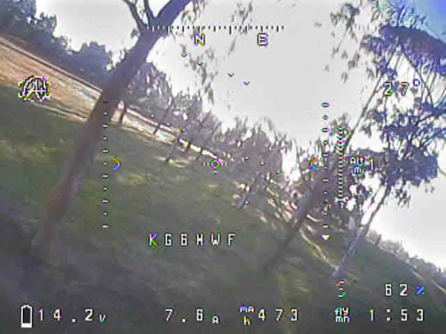 Watch Tree Dive GIF by @dlsspy on Gfycat. Discover more drone, fpv GIFs on Gfycat