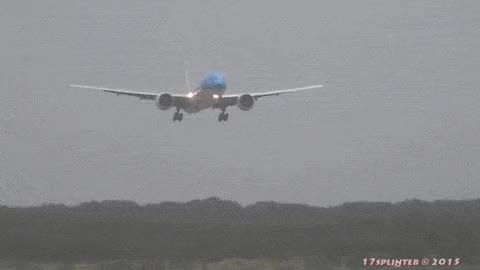 Watch and share Be Careful When Opening Overhead Compartments, Contents May Have Become Scrambled In Flight. GIFs on Gfycat