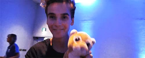 Watch sugg GIF on Gfycat. Discover more related GIFs on Gfycat
