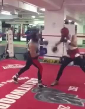 Watch Conor McGregor Getting Beat Up By Boxer Chris Van Heerdan (Boxing Spar) GIF on Gfycat. Discover more related GIFs on Gfycat