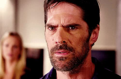Watch and share Thomas Gibson GIFs on Gfycat