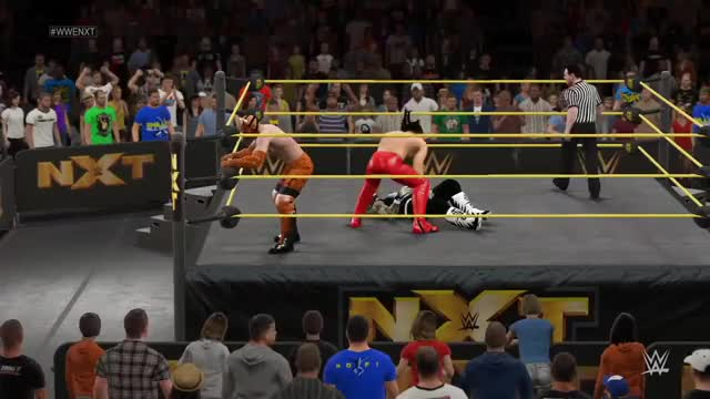 Watch and share Beautiful Combination By Ray Boomer And Ivan On 1st Ever NXT Episode! (reddit) GIFs on Gfycat