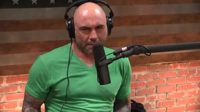 Watch this trending GIF on Gfycat. Discover more Joe, NDT, astrology, comedian, comedy, funny, huh, joerogan, jokes, jre, podcast, what, wtf GIFs on Gfycat